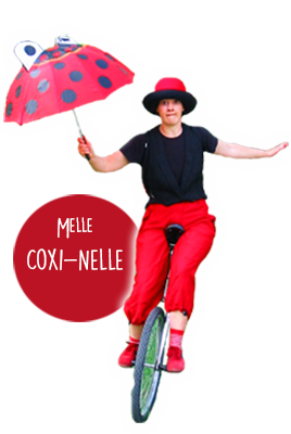melle-coxi2